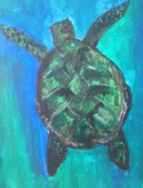 turtle symbology
